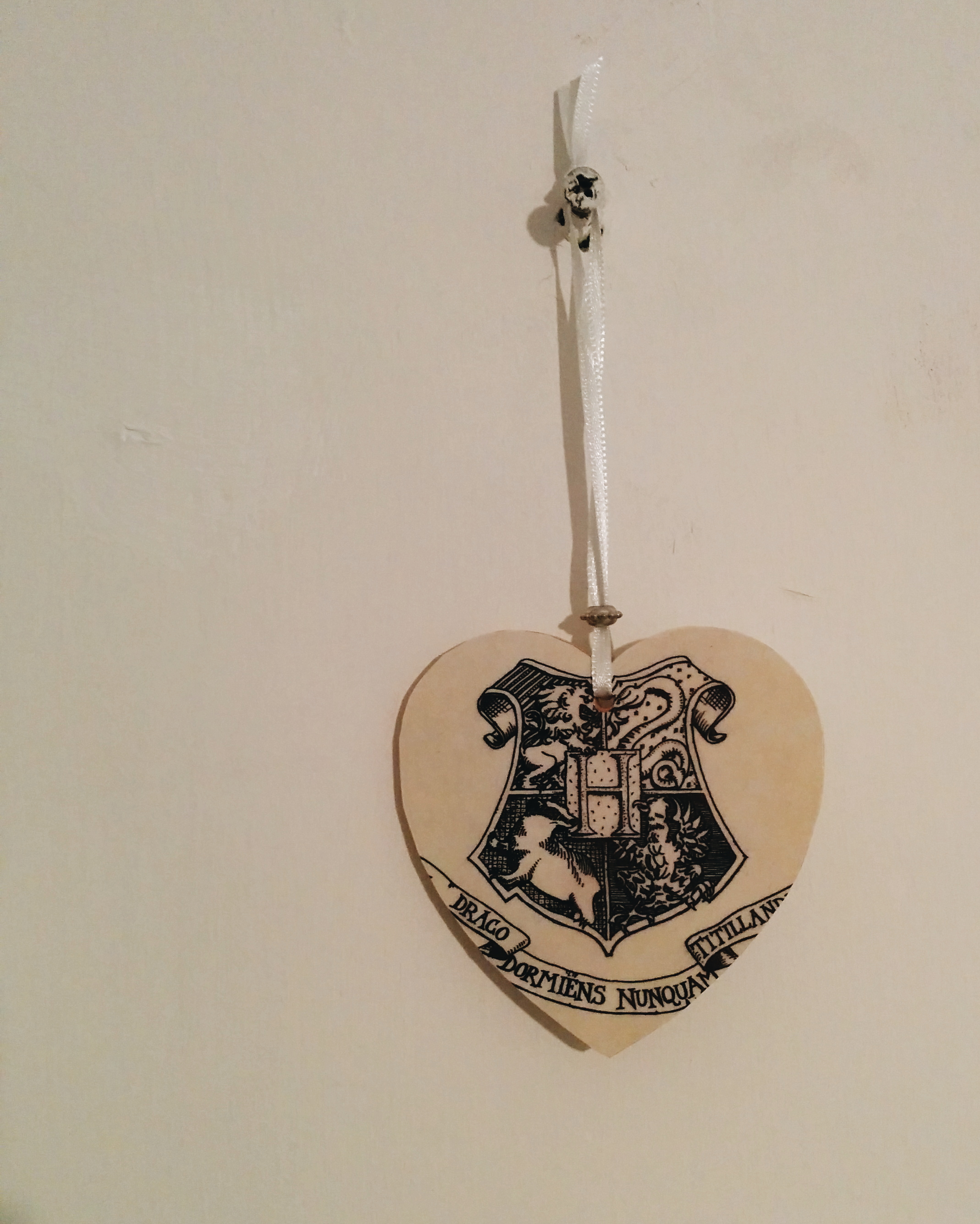 Daisybutter - Hong Kong Lifestyle and Fashion Blog: DIY Harry Potter decoration