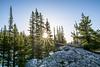 Sunrise at Dream Lake RMNP by bdecker432