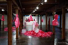 20160621-21-Plastic Histories  by Cigdem Aydemir at Long Gallery