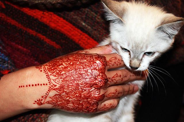 Henna #8