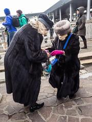 Venise touristes et locaux