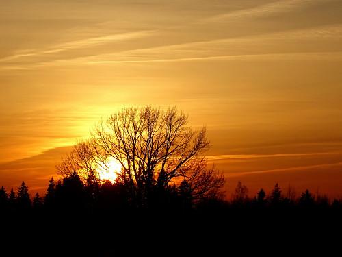 sunset sky nature silhouette yellow clouds landscape sony latvia lettland aluksne latvija daba lettonie dzeltens debesis mākoņi saulriets alūksne hx400v