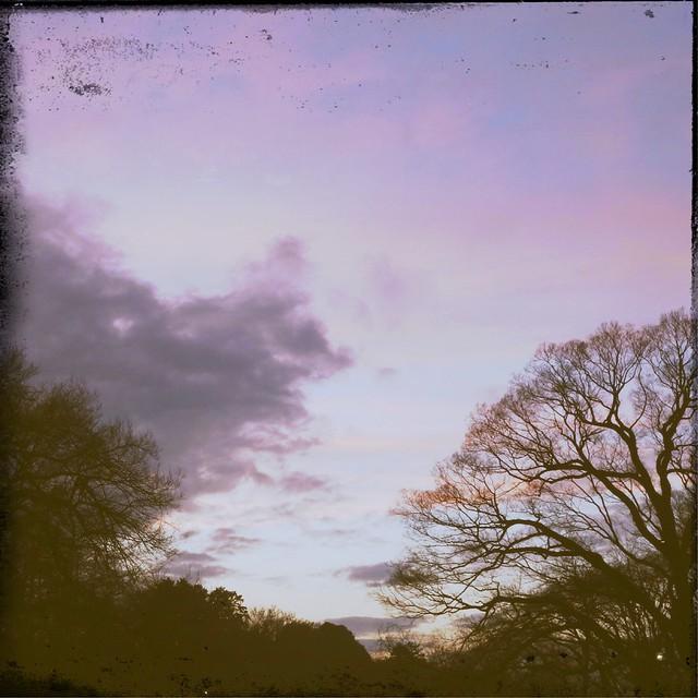 Western sky after rain