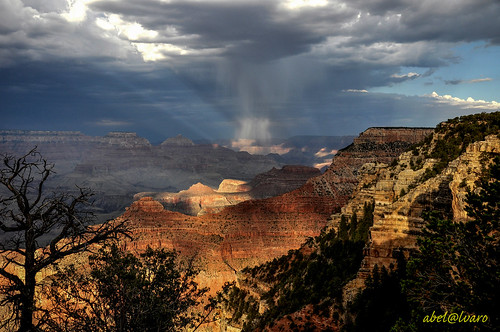 Arizona_Grand Canyon