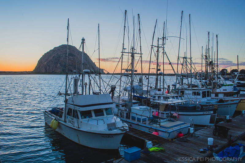 Morro Bay Boats During Sunset