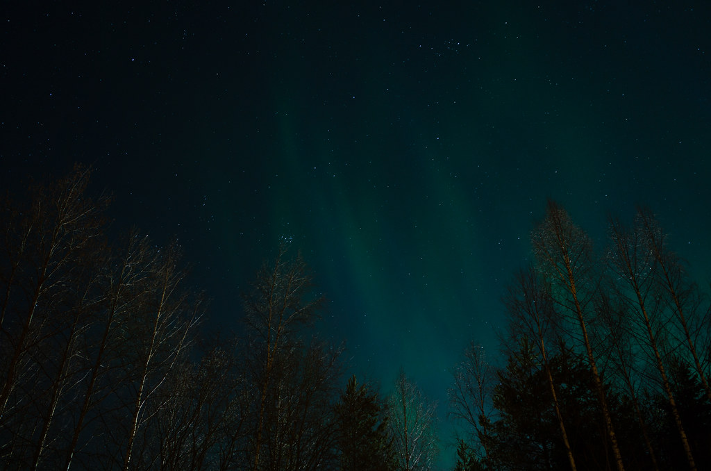 Northern Lights at our place