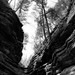 In Canyons 001 by noahbw