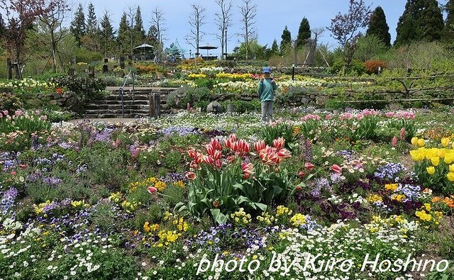 G9Xレビュー、ガーデンミュージアム・香りの庭