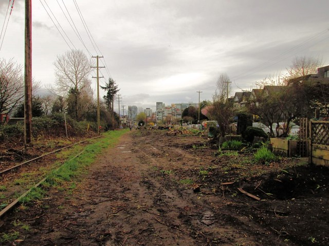 Community Garden Destruction