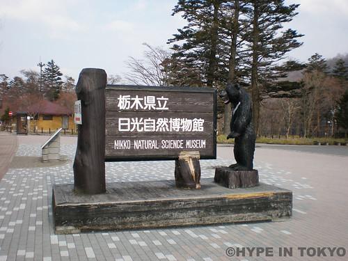 Nikko_11