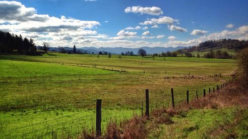 landscape sutherlin sutherlinoregon