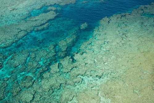 ocean above blue sea water beautiful coral japan island view turquoise kagoshima lagoon aerial clear stunning tropical okinawa reef amami oshima