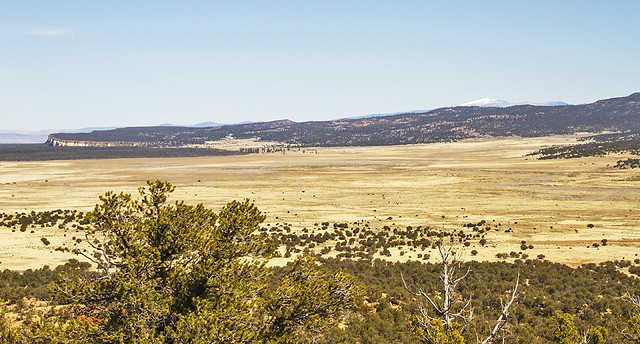 Mount Taylor _1707