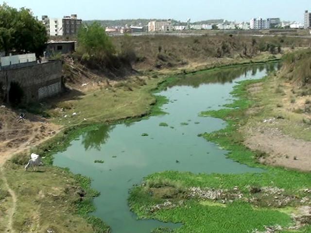 कालियासोत नदी