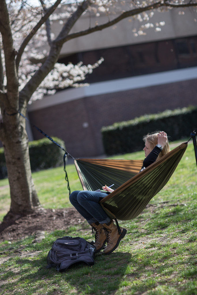 People set up hammocks at VCU