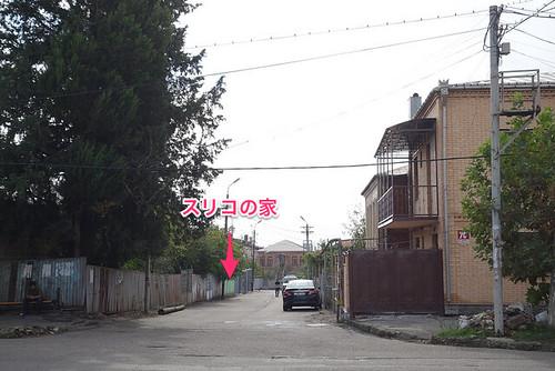 sulico7