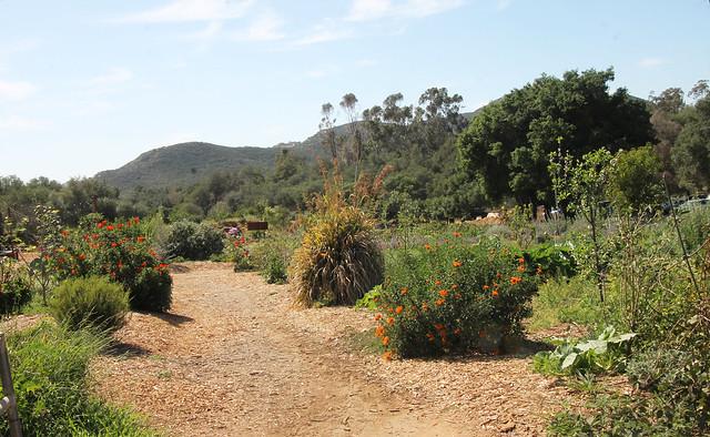 Stone Farms