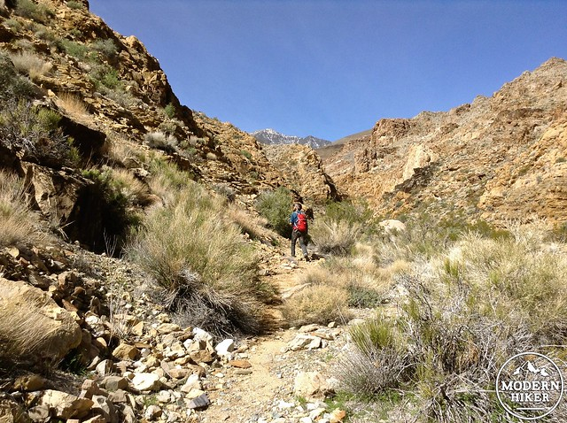 HBR_Trail