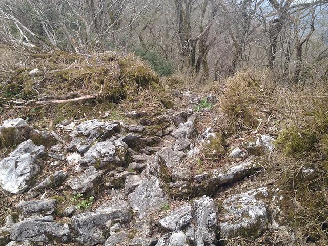 伊吹山北尾根縦走路 岩の登山道