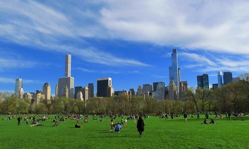 Central Park #19