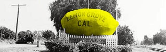 Lemon Grove, California lemon