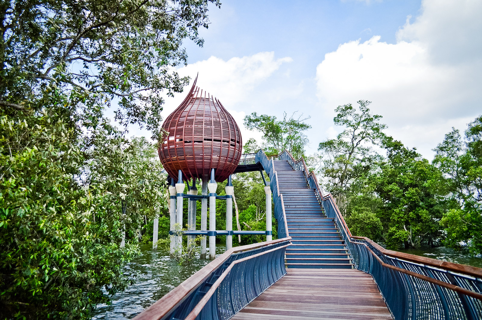 Take a Walk on the Wild Side: Sungei Buloh Wetland Reserve