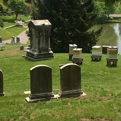 Beehives, Green-Wood Cemetery