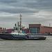 Sleepboot/Tug Schelde - Nieuwe Maas - Port of Rotterdam