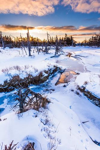 canada sunrise newfoundland stjohns capespear