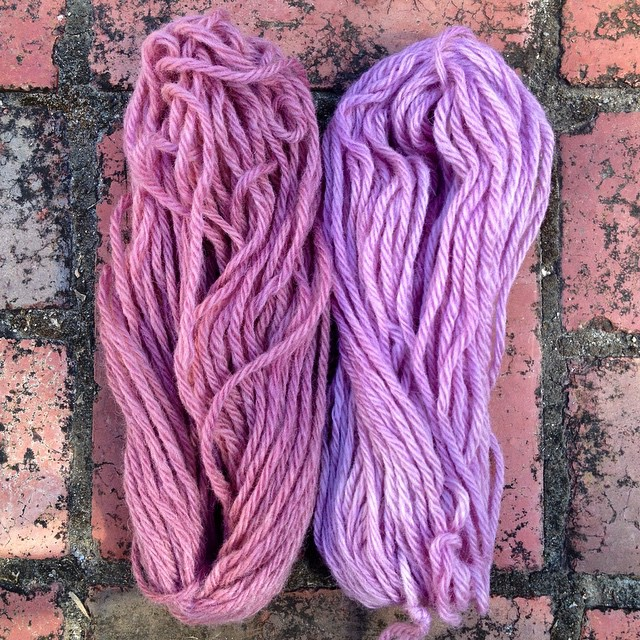 Red cabbage dyed wool yarn: left = solar dyed, right = stovetop dyed. Both mordanted with vinegar.