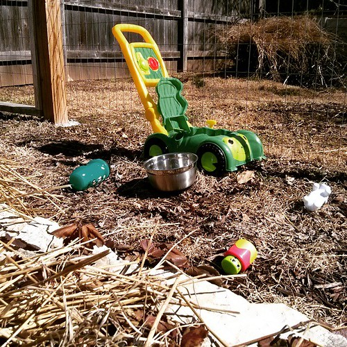 We have a few new tools in the garden this year.