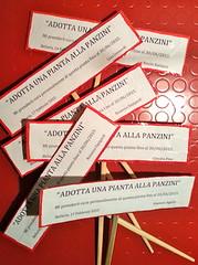 """a.s. 2014 2015 Progetto """"Adotta una pianta alla Panzini"""""""