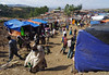 Saturday market in Lalibela