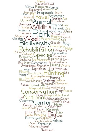 Recapping our previous conversation (wordcloud) @knysnatourism @ThisTourismWeek @GvCyclotis @martinhatchuel