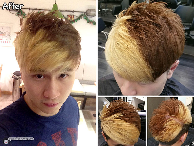 headlines hair salon renfred ng