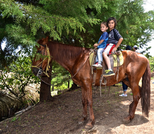 Horseback riding - Green Rush Nature Park, Guatemala