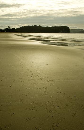 Cooks Beach dramatic vert, Coromandel Penn 22 4 15 K55151