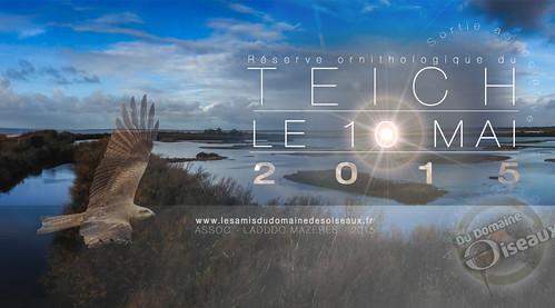 Sortie associative - Le Teich 10 mai 2015