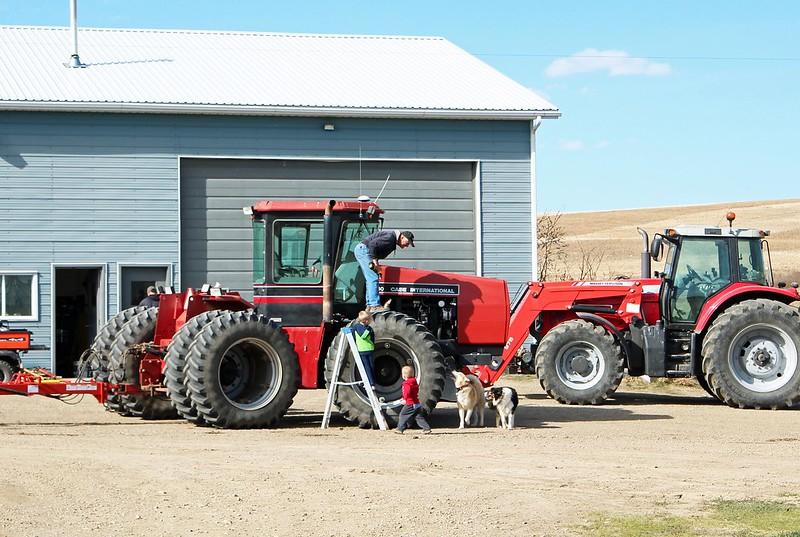 Farm Yard 2015