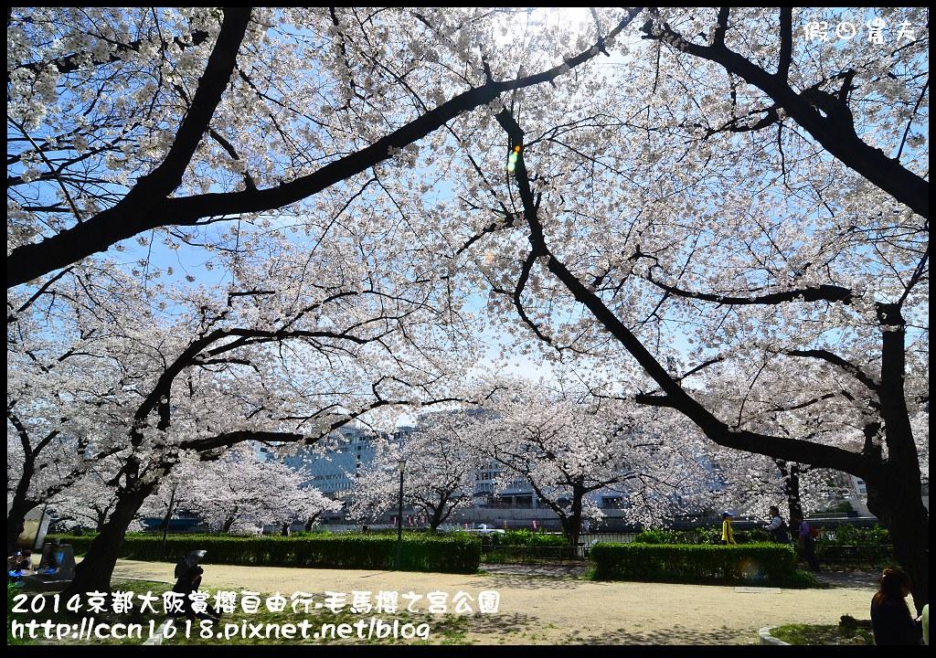 2014京都大阪賞櫻自由行-毛馬櫻之宮公園DSC_2058