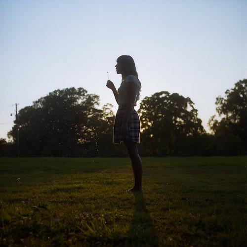 sunset summer 120 film silhouette evening kodak alabama may dandelion alexandra montgomery magichour portra160nc colornegative 2011 6x6cm rolleicordiii