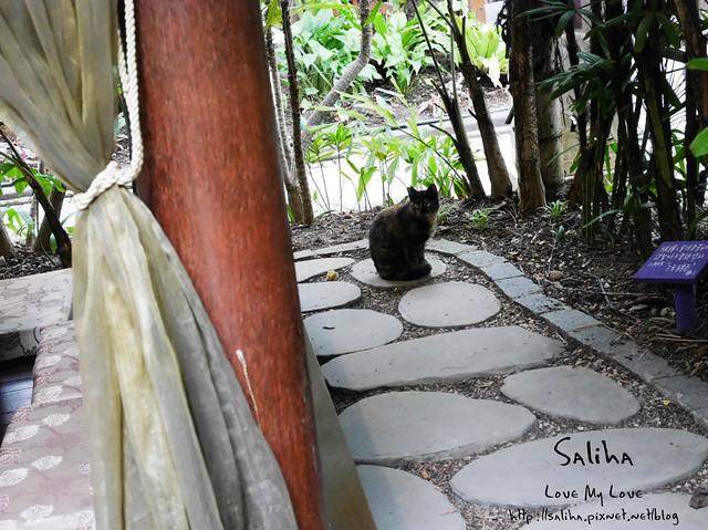 高雄ㄧ日遊景點餐廳動物園淨園 (5)