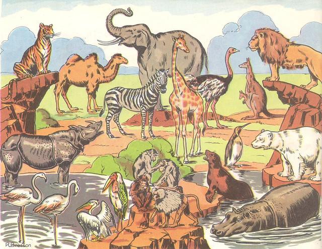 27 au zoo