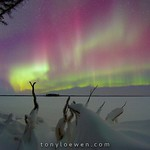 Tony Loewen Photography -