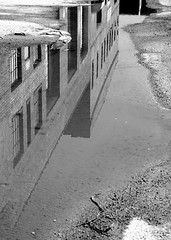 Building reflected in puddle.  #blackandwhite