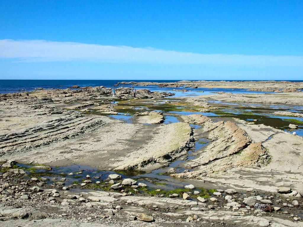 Low tide in Kaikoura