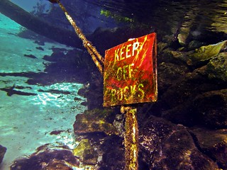 Keep Off Rocks in Silver Glen Spring