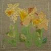 Three daffodils by helenann