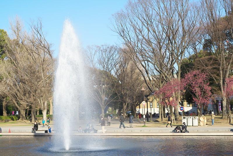 東京路地裏散歩 上野公園の桜 谷中から上野へ 2015年3月25日