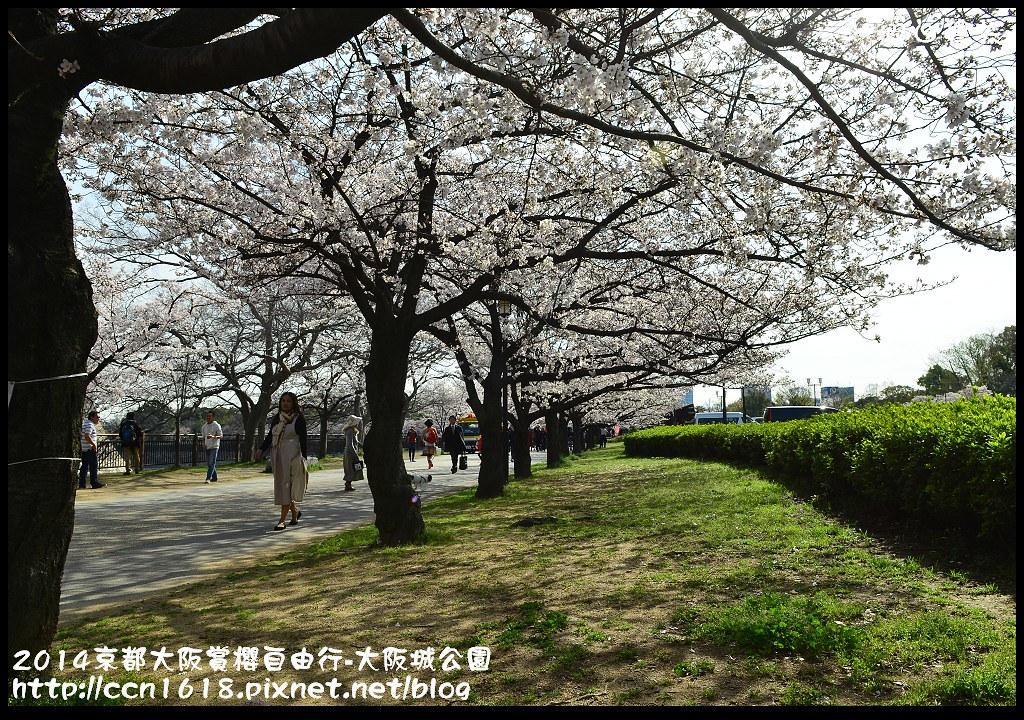 2014京都大阪賞櫻自由行-大阪城公園DSC_1712